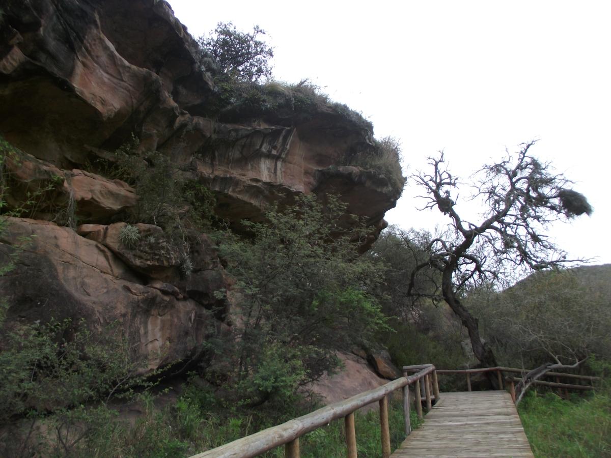 Un día en el Cerro Colorado (Primera Parte)