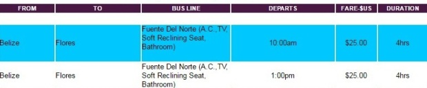 buses-flores-belice